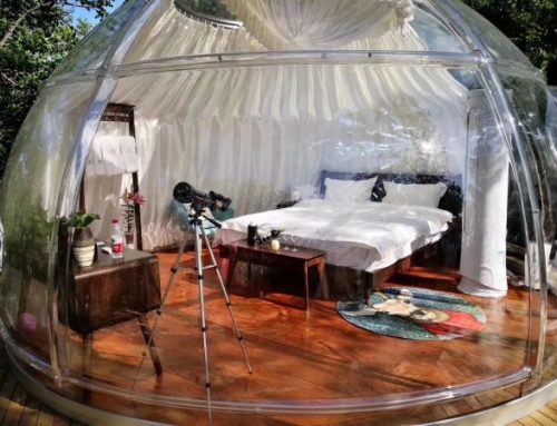 Transparent Dome House: The Perfect Way To Escape Into Nature